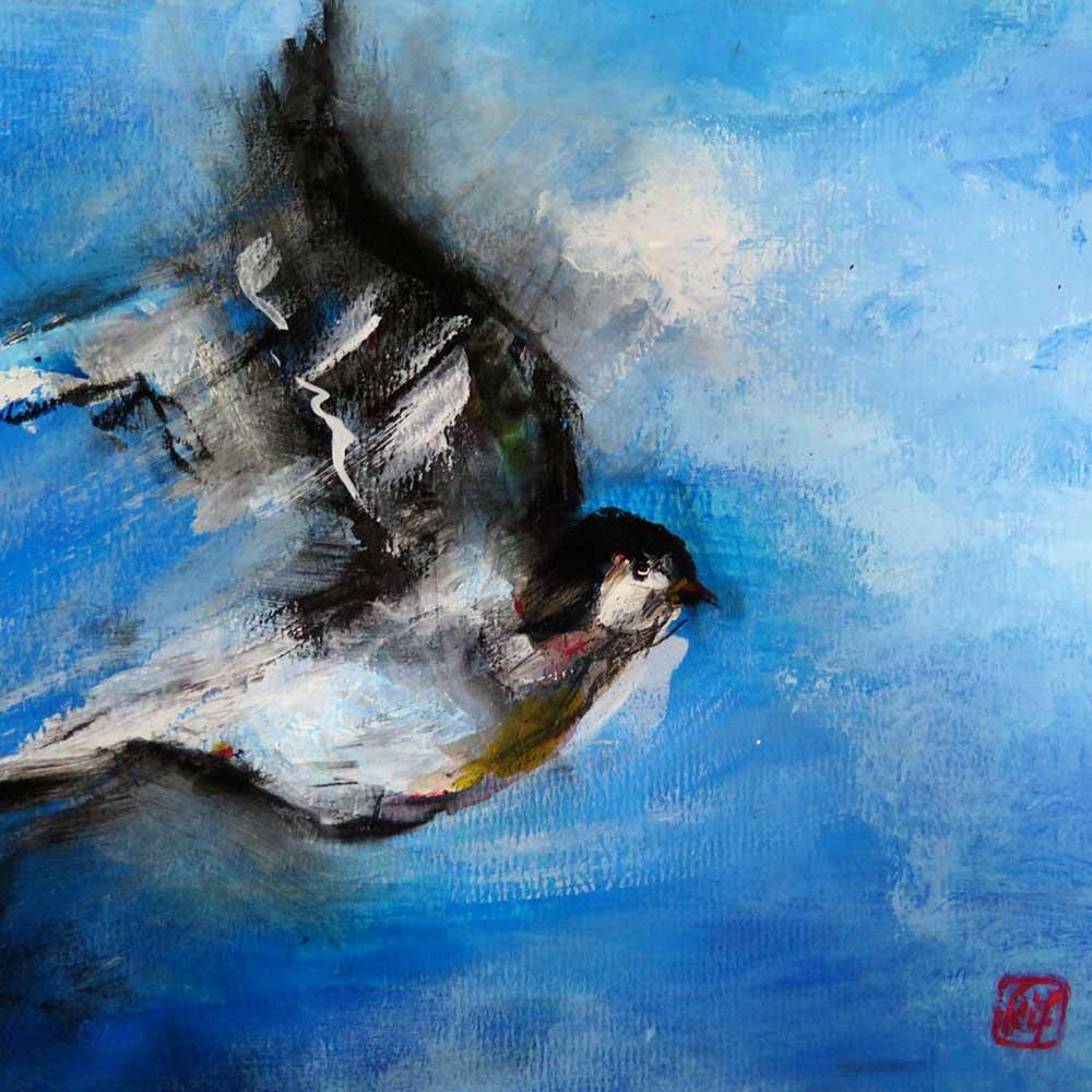 oiseau-41