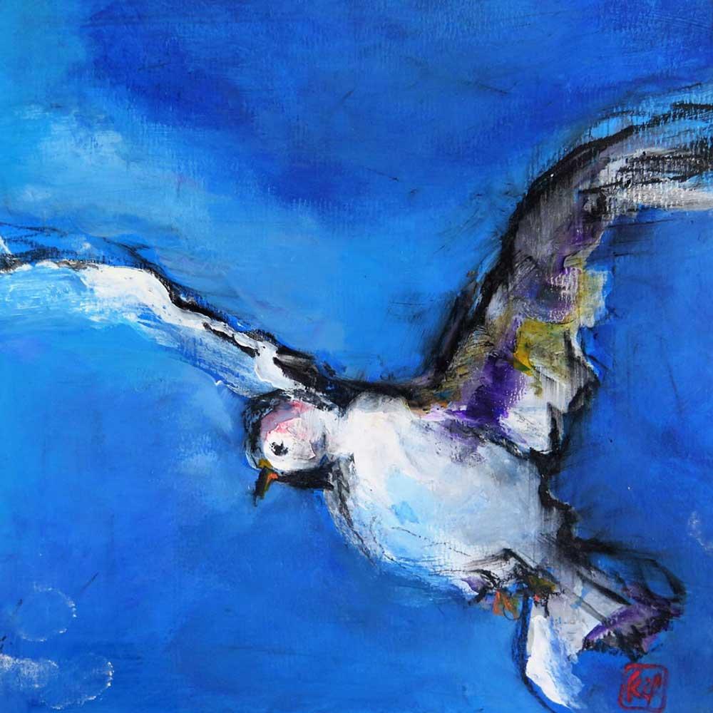 oiseau-42